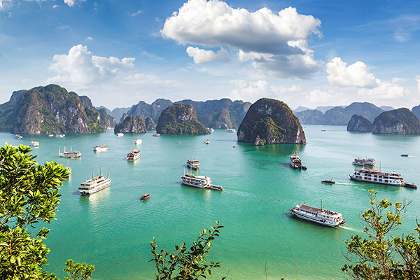 Vietnam Trip Glenhaven Home & Garden