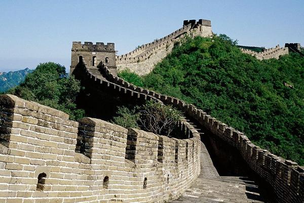 Wall Of China Glenhaven Home & Garden